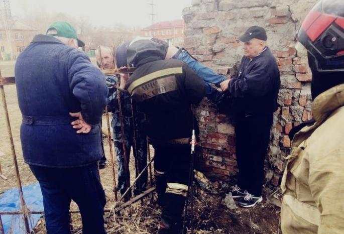 В Омске с родителей школьников собирают деньги на спил пик с заборов