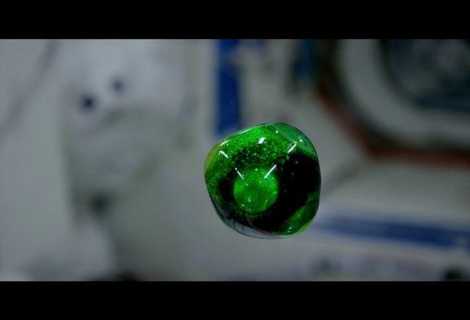 Nasa выложило на Youtube запись эксперимента на борту МКС