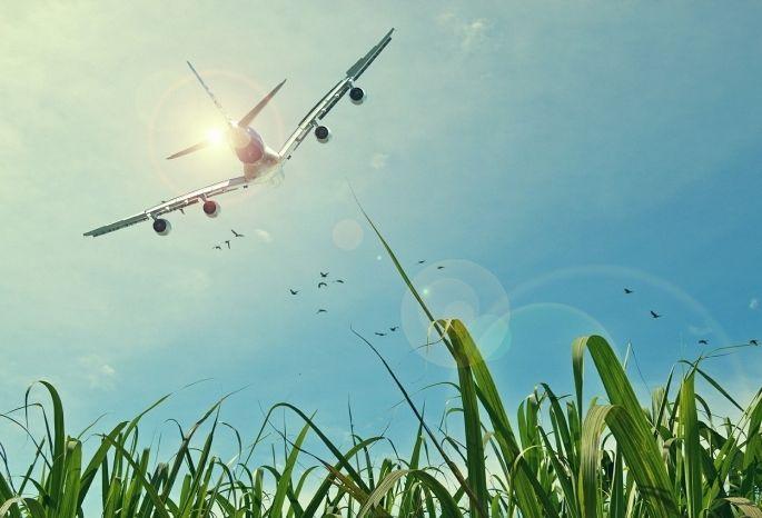 Новосибирский аэропорт «Толмачёво» перешел налетнее расписание