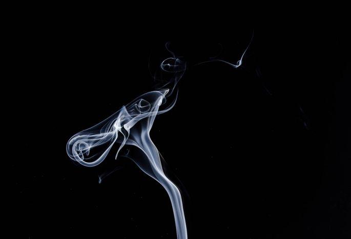 Заодин год доля контрабандных табачных изделий вОмске возросла на8%