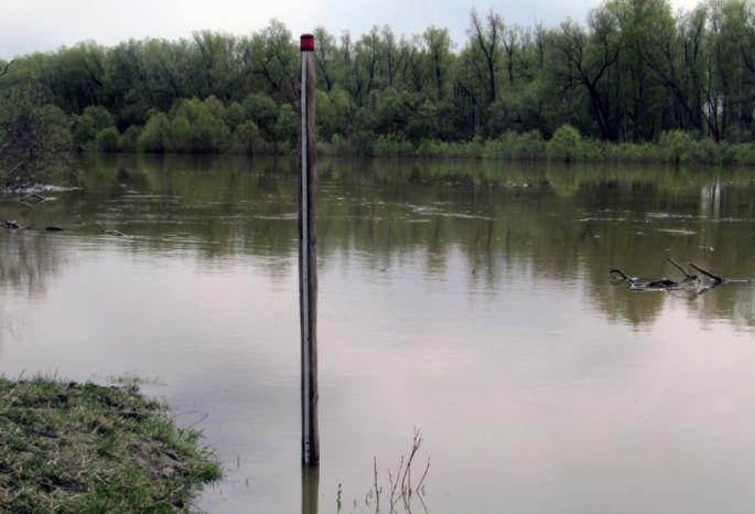 Квыходным уровень воды вИртыше достигнет максимума