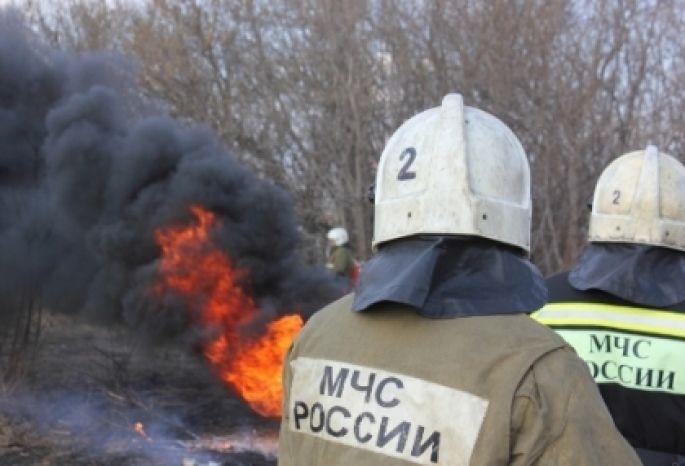 ВОмске генпрокуратура просит ввести особый противопожарный режим