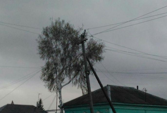 ВОмске ночной циклон снес крыши иповалил деревья