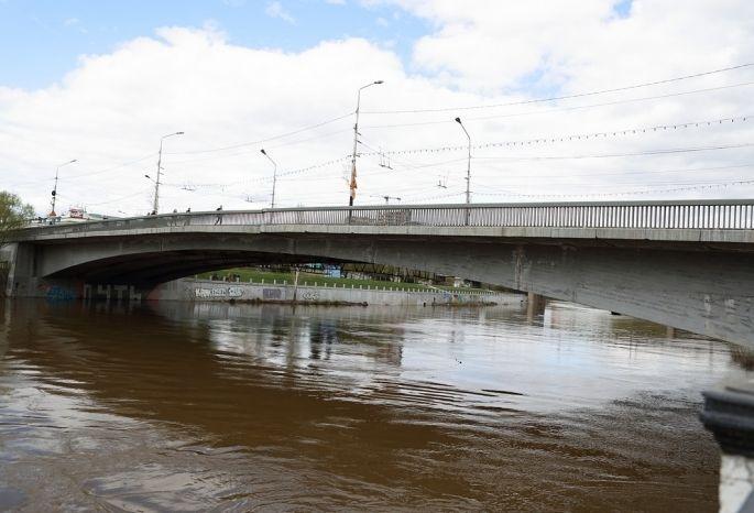 Фролов поведал, когда начнется реконструкция Юбилейного моста вОмске