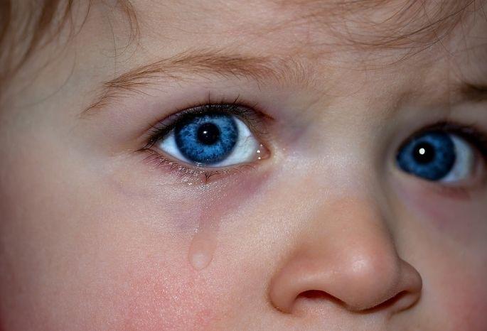 Следком проверит омский садик, где ребенка заставляли драить унитазы