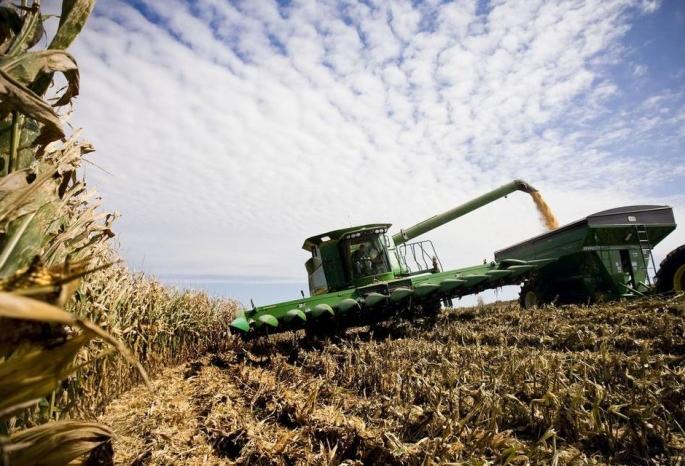 Субсидии наразвитие сельского хозяйства получит Белгородская область