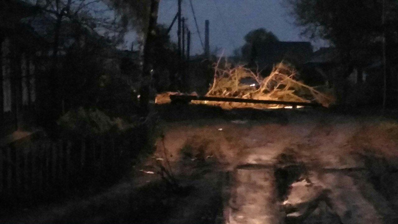 ВОмске ветер срывал деревья исносил крыши домов